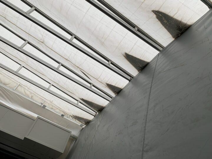 張替前 屋根の雨水たまり